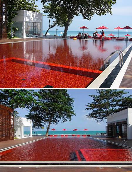 a96815_a510_blood-red.jpg